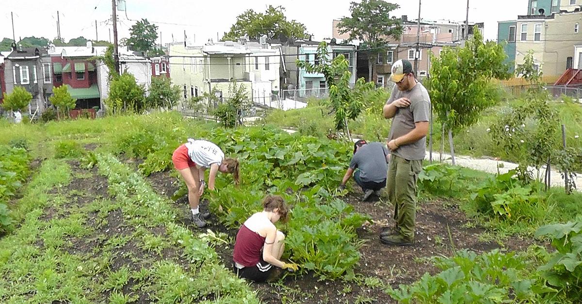 University-Community Partnerships: Strong Neighborhoods