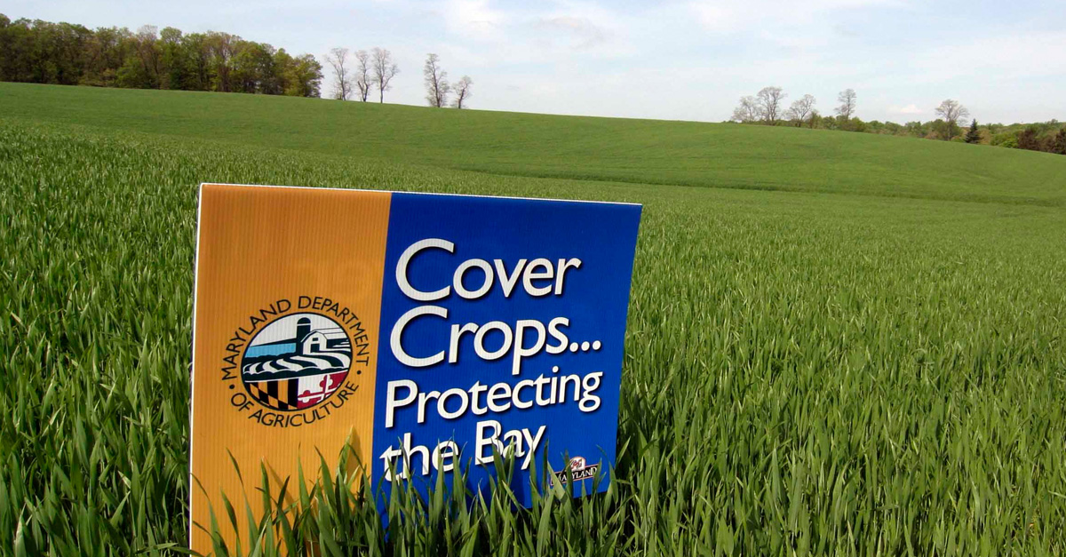 Using GIS to Aid Maryland Cover Crop Program