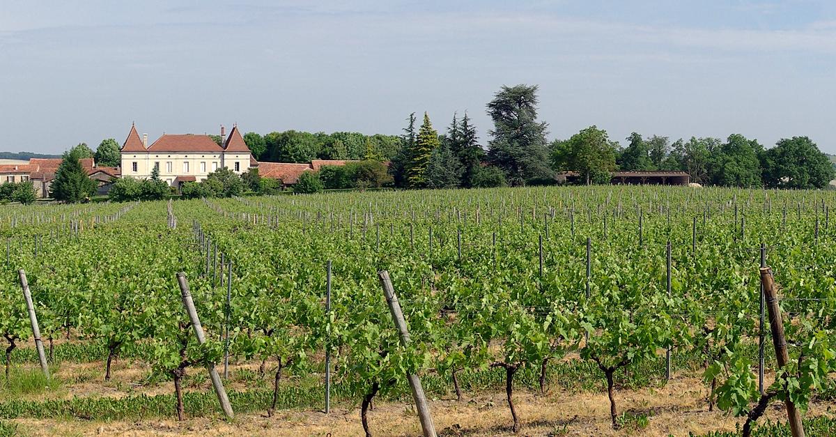 Osher Plans Trip to Bordeaux, France