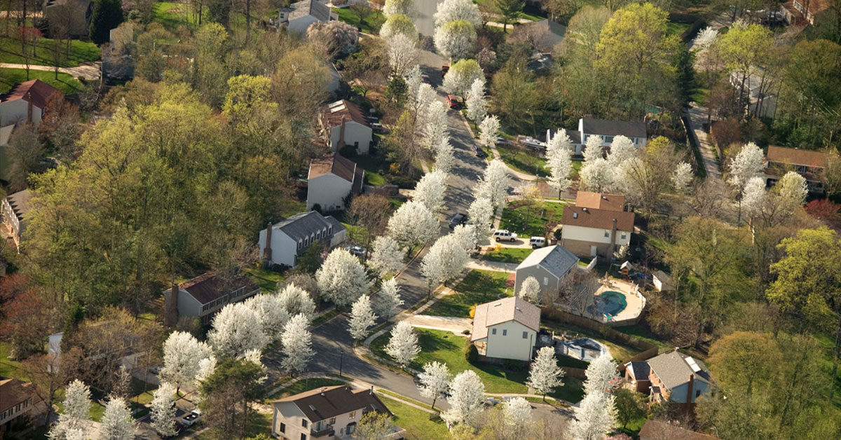 There's No Place Like Home: COVID-19, Social Distancing, and Economics