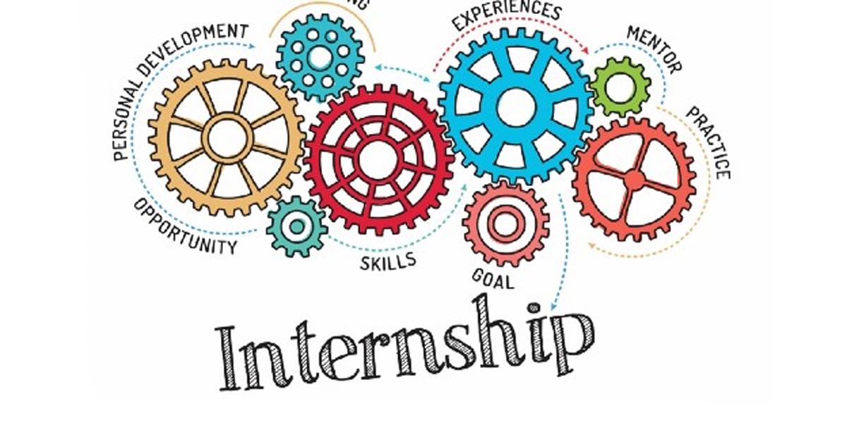 TU Incubator member company provides internship opportunities